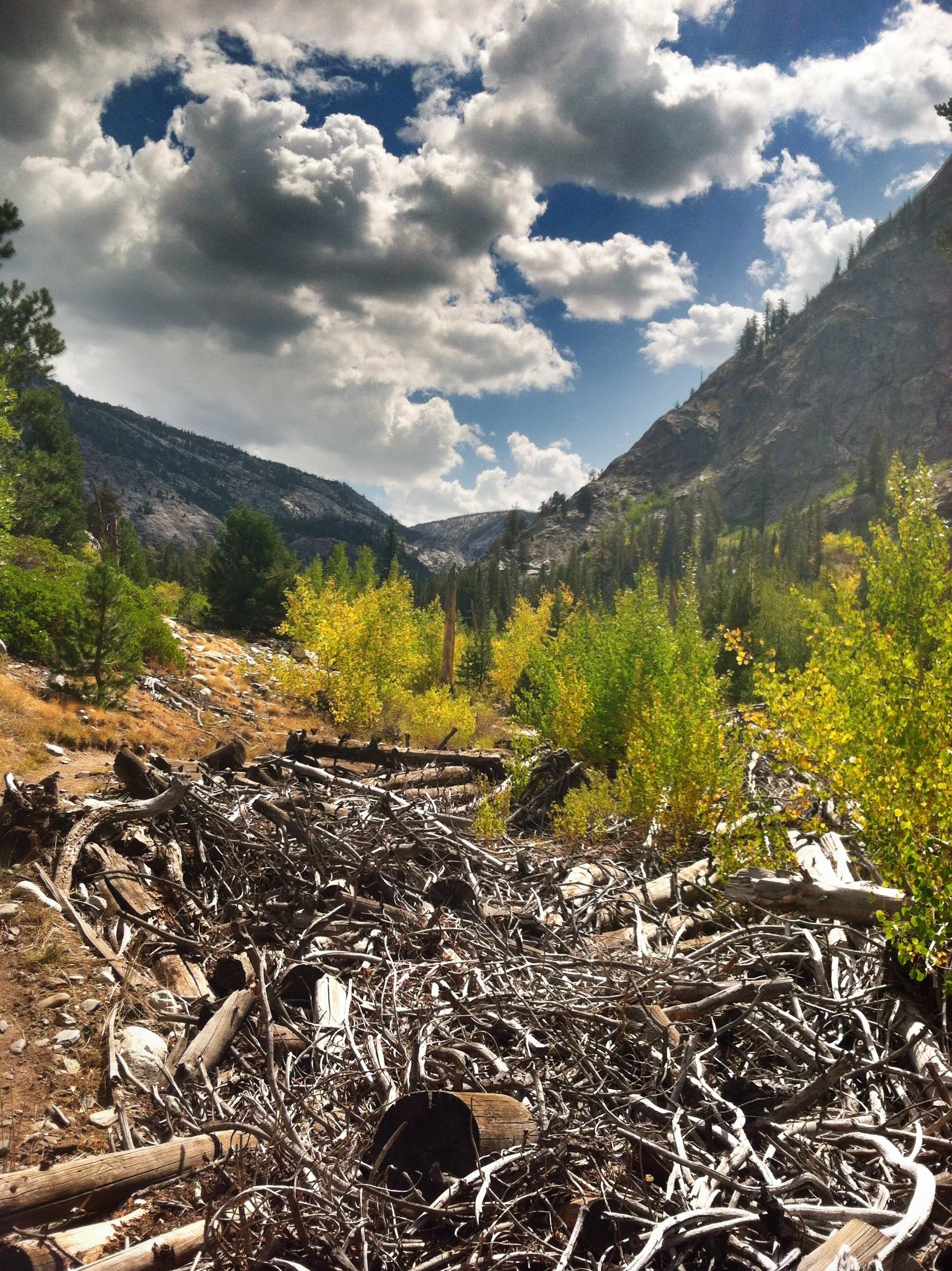 Sierra Day Nude Photos 31